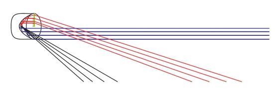 PRIMUS PrimeLiteTrail Grafik