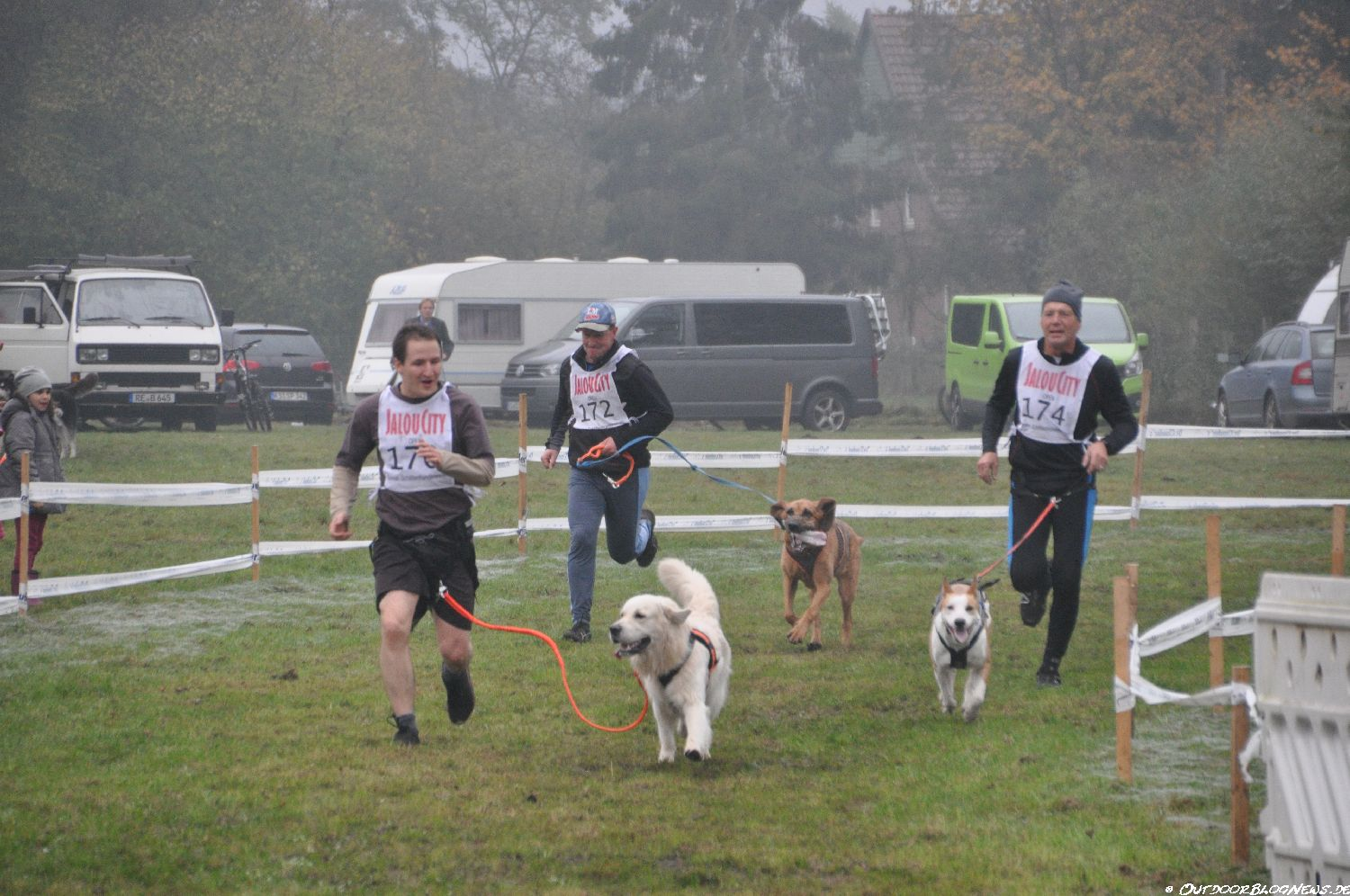 Cani Cross – Unser neues Hobby